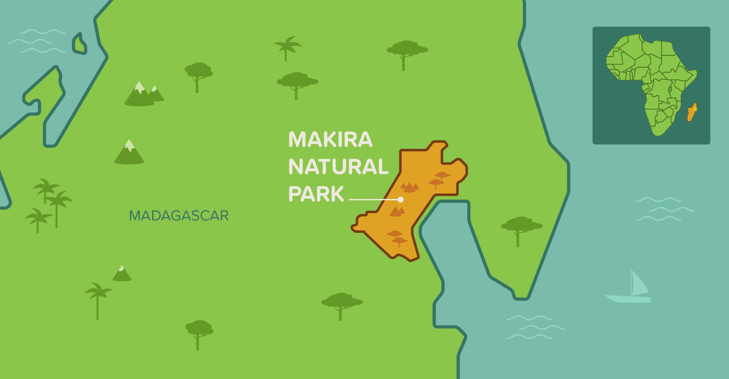 makira_map-01 copy.jpg
