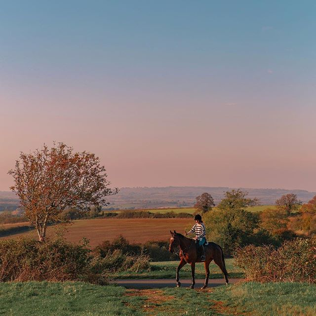 Looking forward to some crisp country walks to work off that post-roast slump! (Always does the trick!) Enjoy the holidays everyone 🥳🥳🥳 Kick things off with a nice little relax to these lovely soft colours 😍 . . . . _ #britishcountryside #horseride #horserider #christmasride #winterride #cotswolds #cotswoldslife #brightonphotographer #greatbritishcountryside #softhues #colourshow #shotoncanon #merrychristmasyafilthyanimal