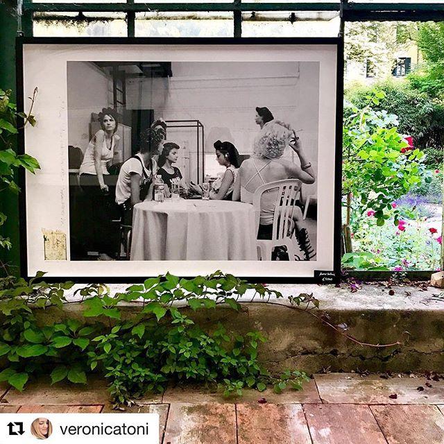 #thankyou @veronicatoni #art #bozen #bolzano #scenesintheglasshouse