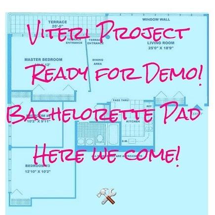 FINALLY GOING TO DEMO THIS BITCH! 💋  #Viteritransformation #viteriproject #Bachelorettepad #designerlebrity #milliondollarlistingny