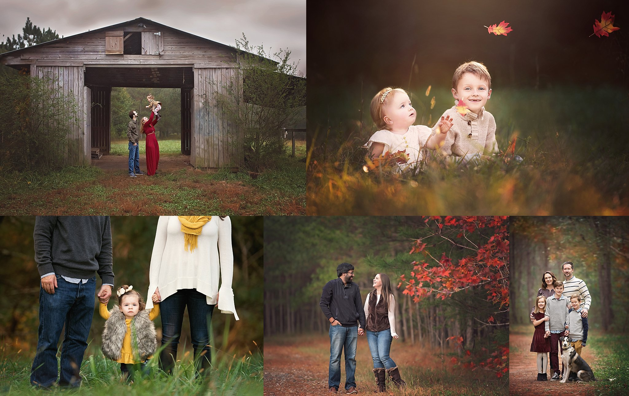 Birmingham Park- Milton,Ga Gorgeous fall back drops, open fields, pathways and rustic barn. October 19th and October 20th EVENING SESSIONS ONLY.  20 min session/6 digital files with option to purchase more/ $250  BOOK NOW