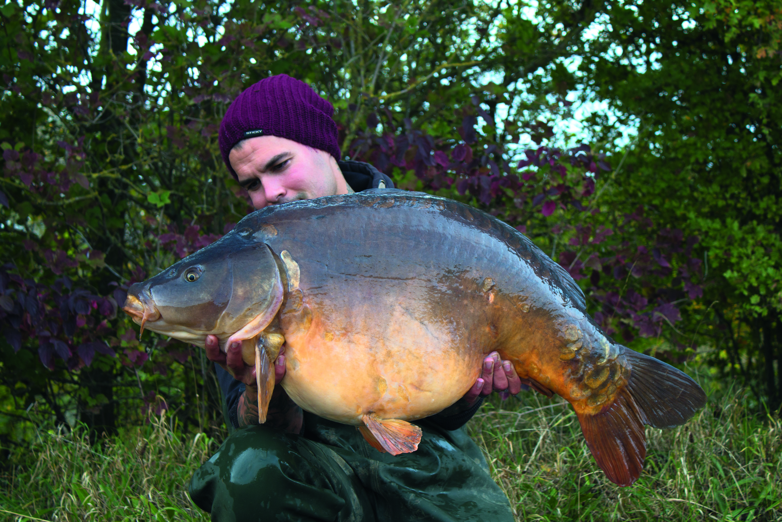 Another one of the lakes' big mirrors, the Peach at 47lb.