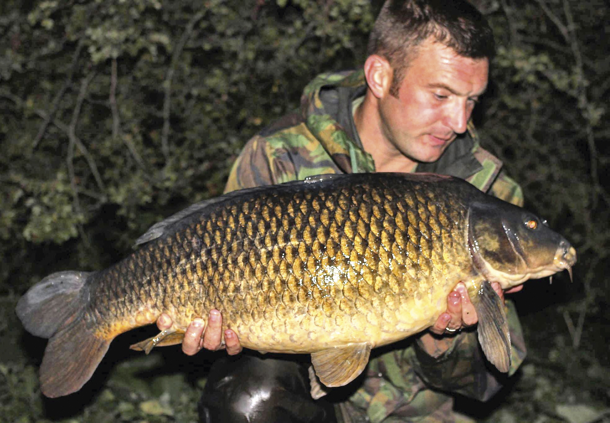 By daring to be different, highly-pressured fish, like this 30lb-plus common, can be merely a cast away