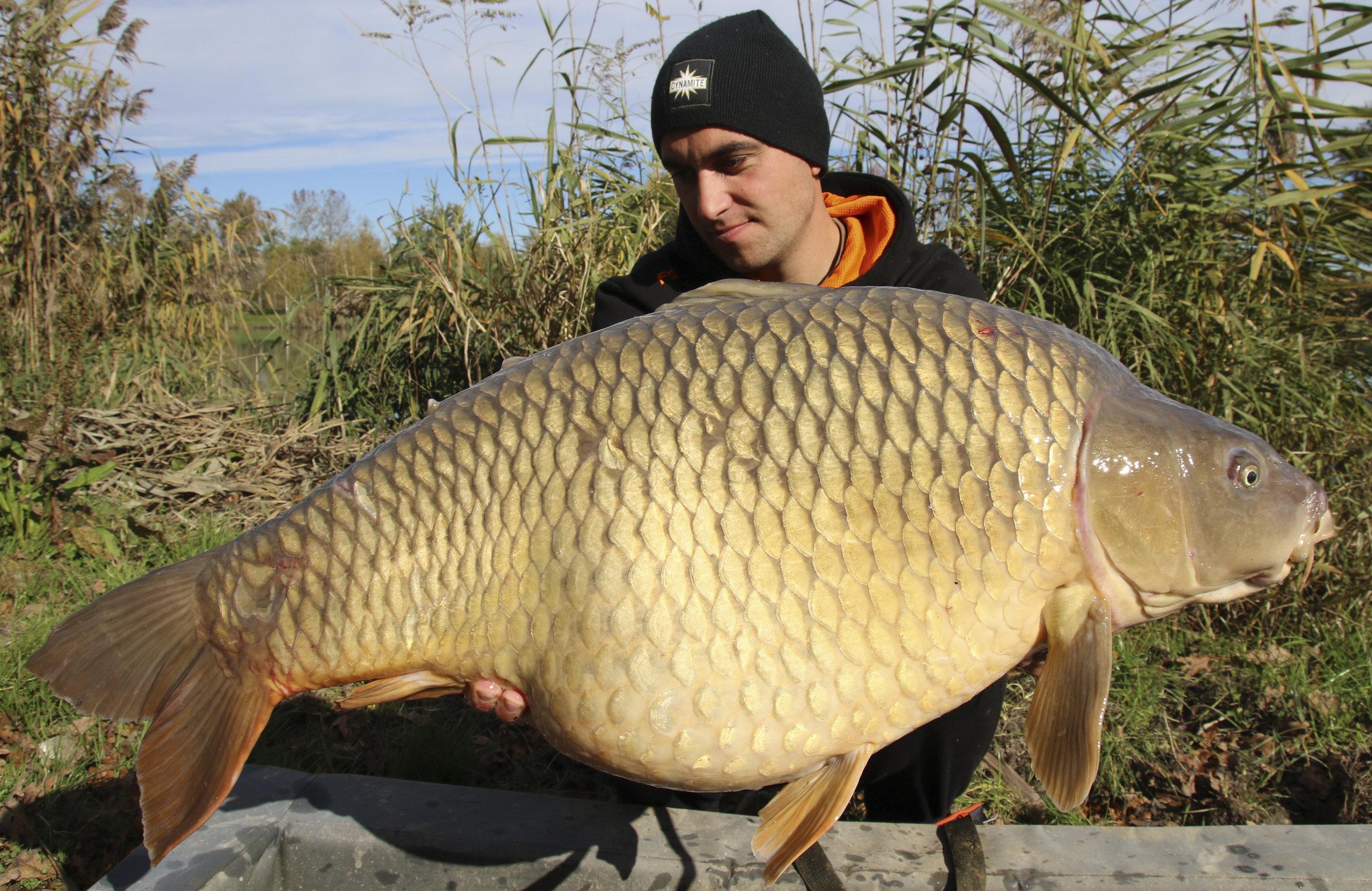 My first bigger carp – 22.6kg.