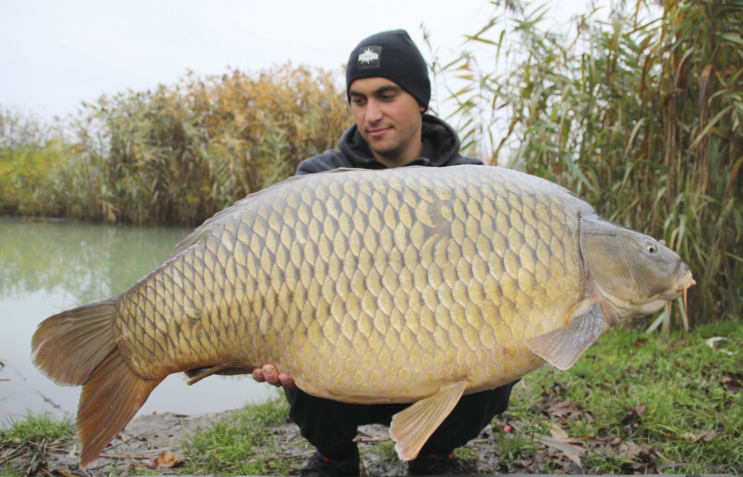 One of the most beautiful commons weighing 25.3kg.