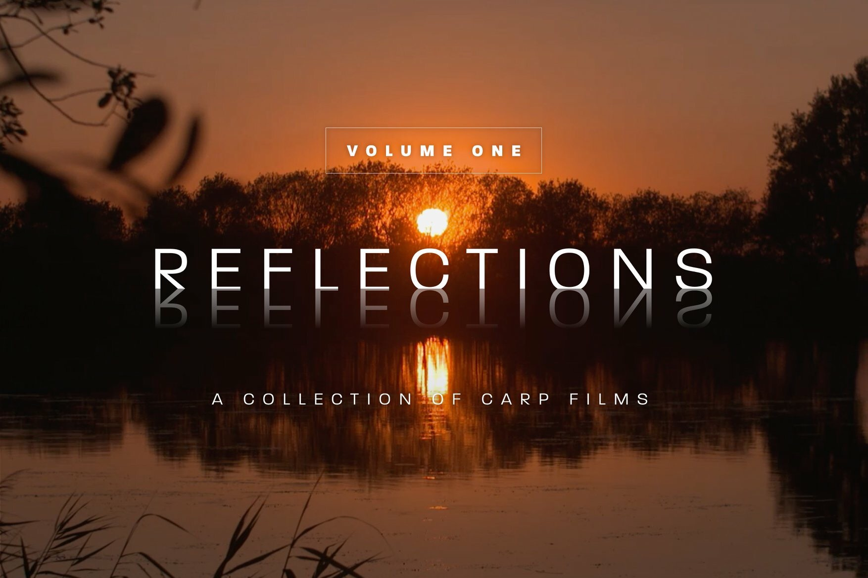 Image 3a - Reflections 2.jpg