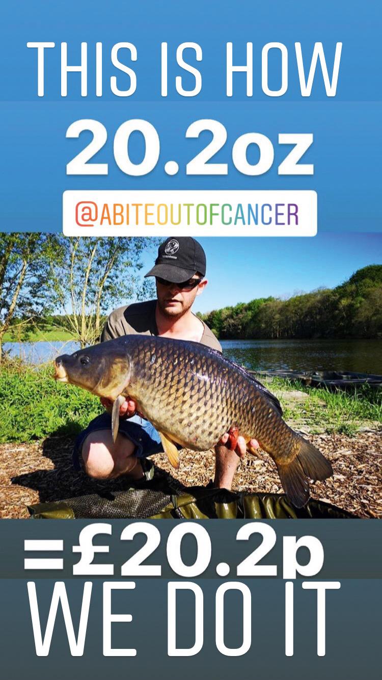 CW337 FTB - Image 10 - A bite out of cancer II.jpeg