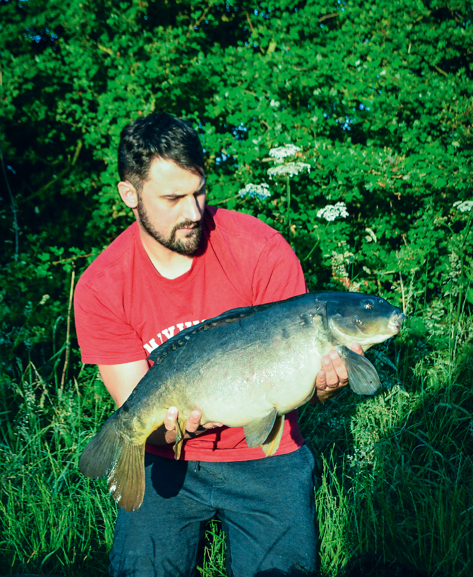 Almost a leather! A very sparsely-scaled upper double mirror