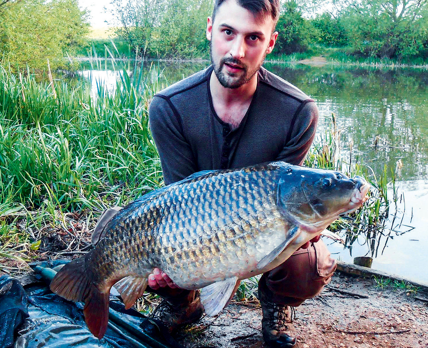 This 30lb-plus specimen is typical of the older, larger Nene Valley commons