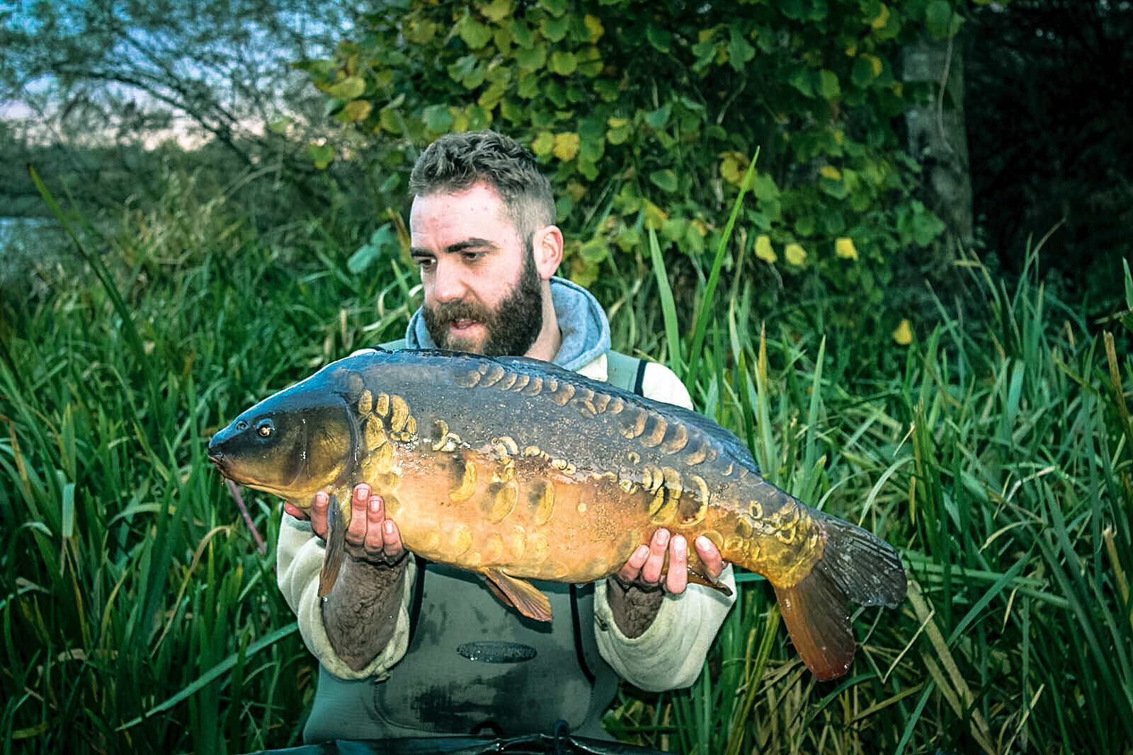 Why these precautions are so important! This low 20 has only put on 2lb in the past ten years, there is no quick fix should an otter gain entry to a fishery containing slow-growing, elderly fish