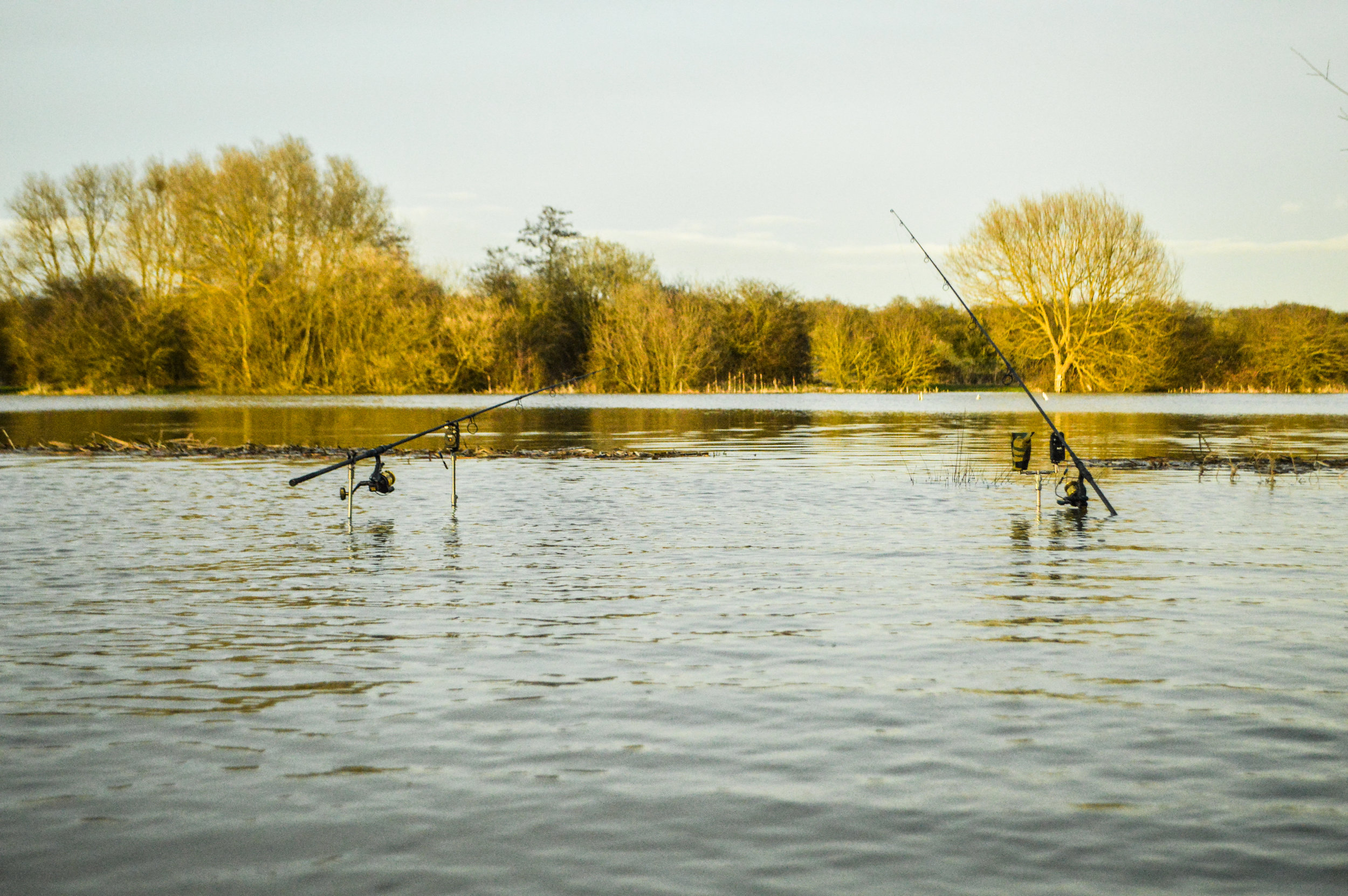 A flooded double-swim, some two foot above its normal level early in the season!