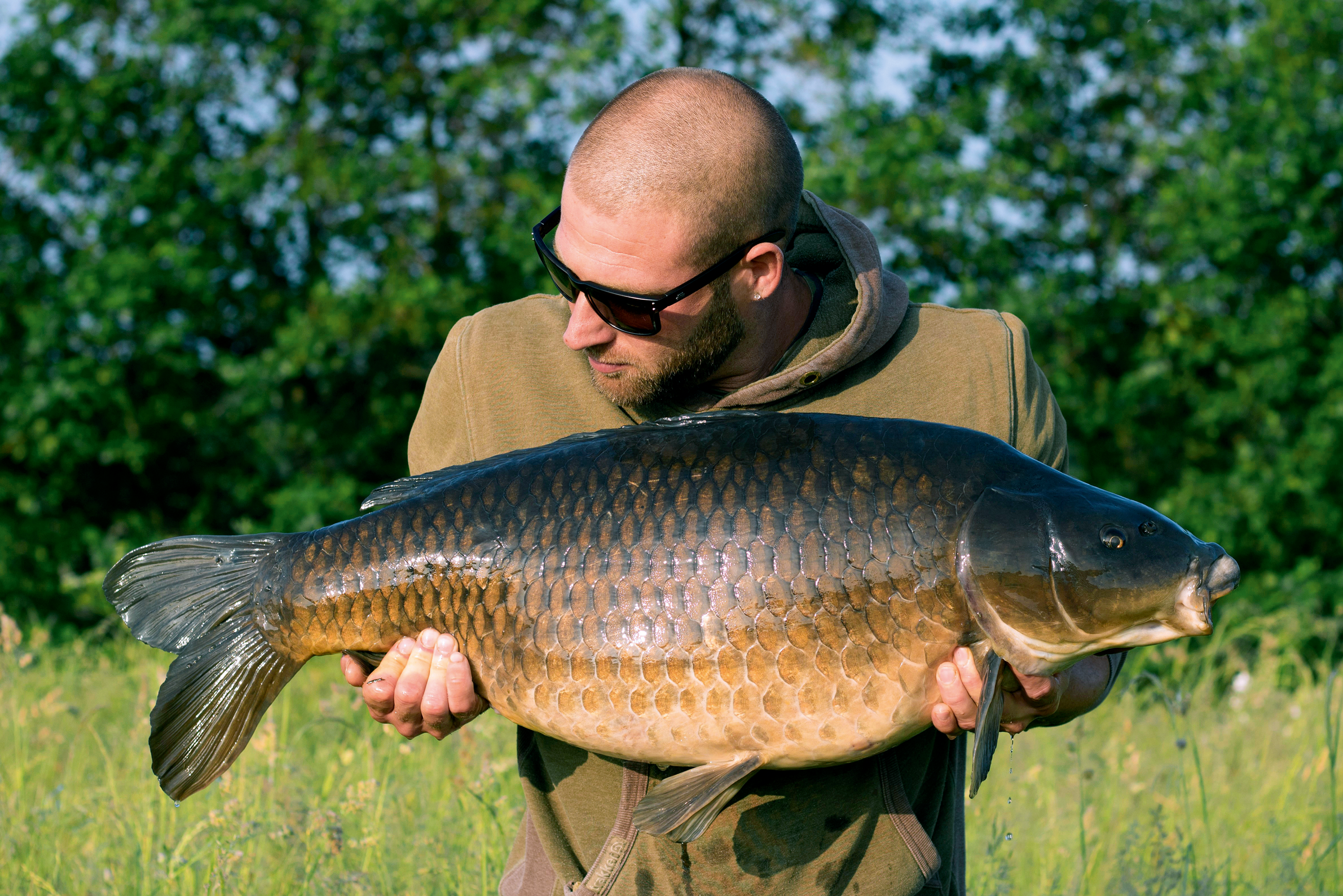 Image-15---A-solid-looking-31lb-common,-the-last-of-the-spring-campaign.png