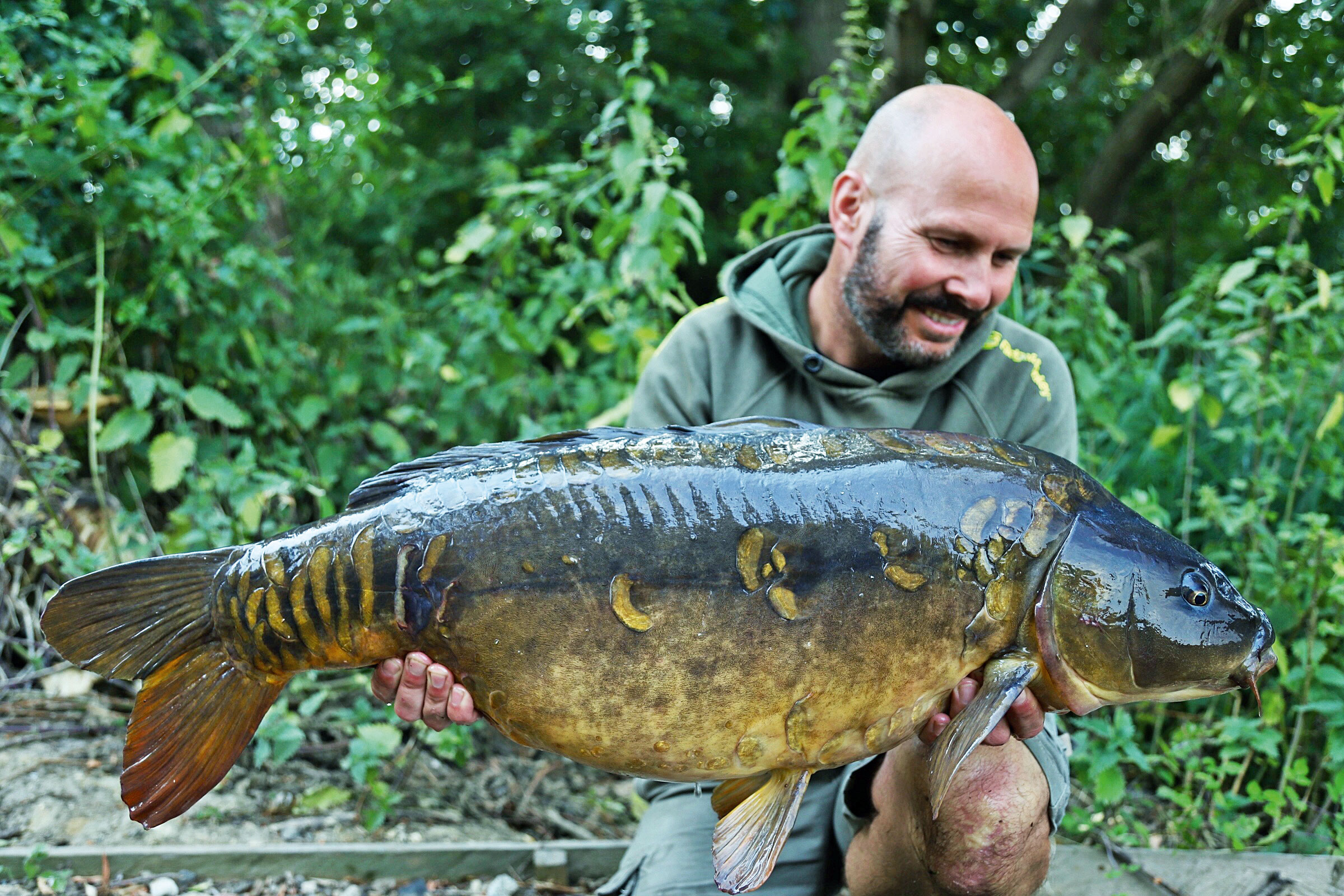 This carp was caught from a very weedy Kent lake, where heavy-duty tackle was required