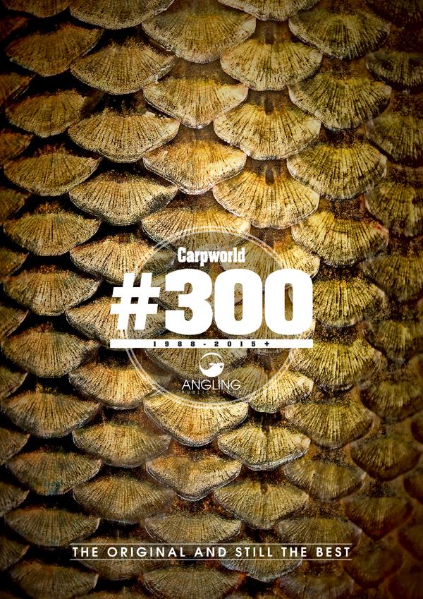 CW300.jpg