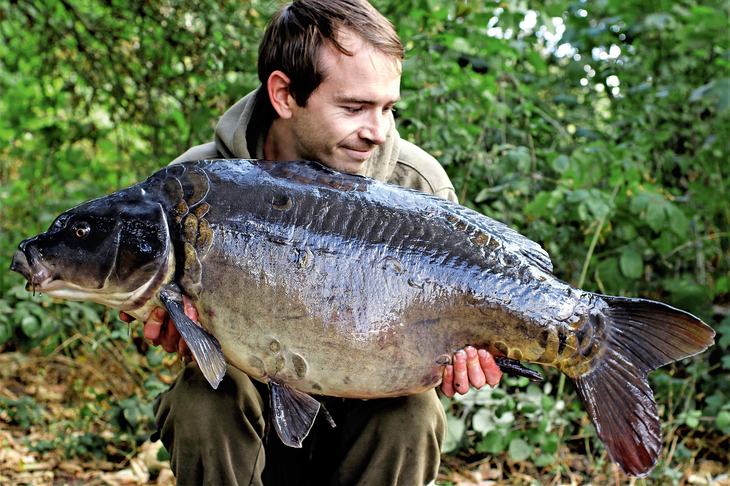 PIC 17- A deep, grey looking mirror, which is another superb stocked fish to make this lake promising for the future.jpg