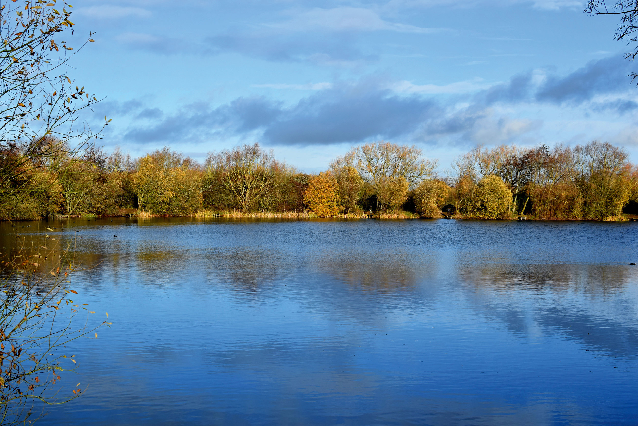 IMAGE 2 - Mallard Lake.jpg