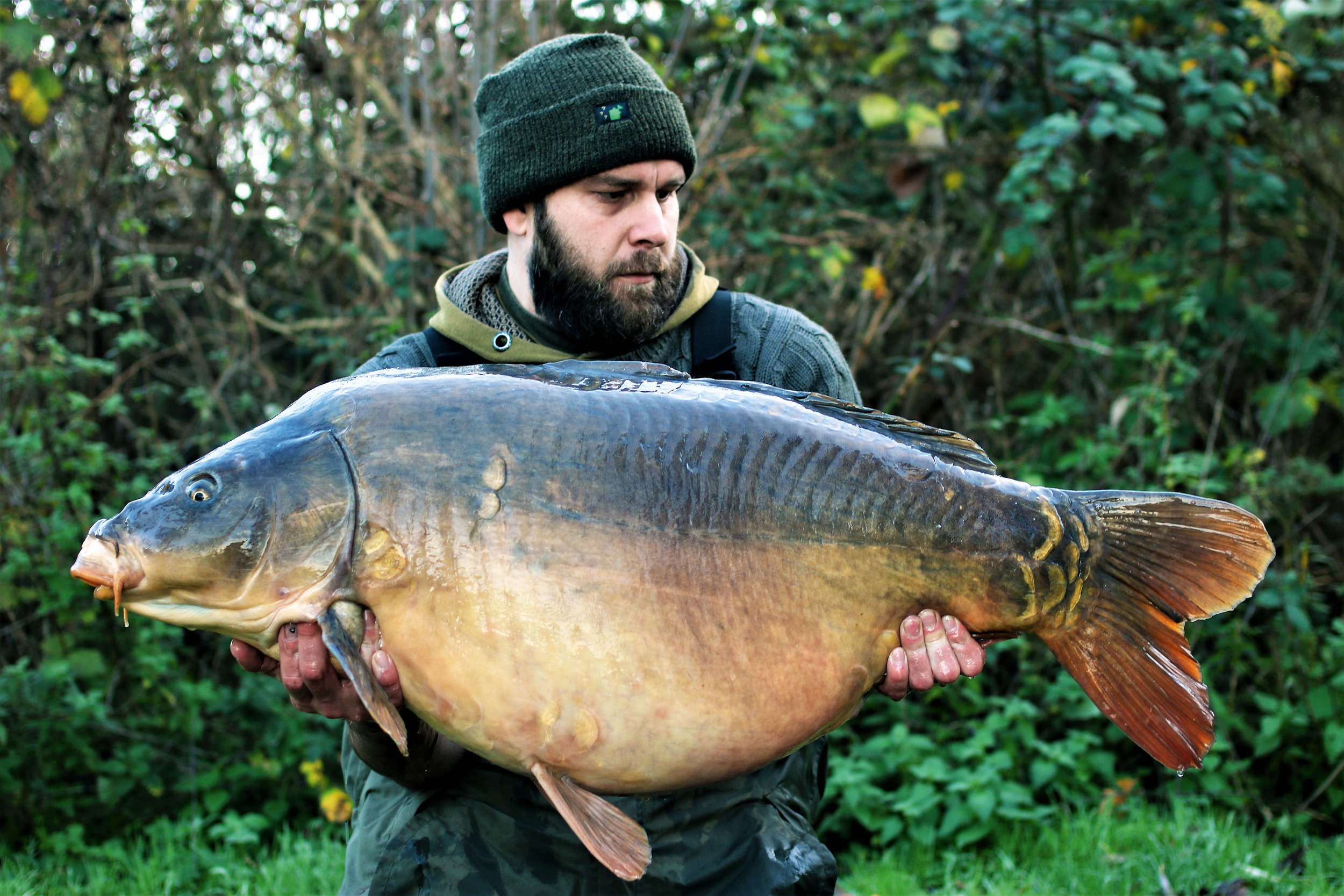 A fish known as Armageddon at a colossal 50lb 10oz