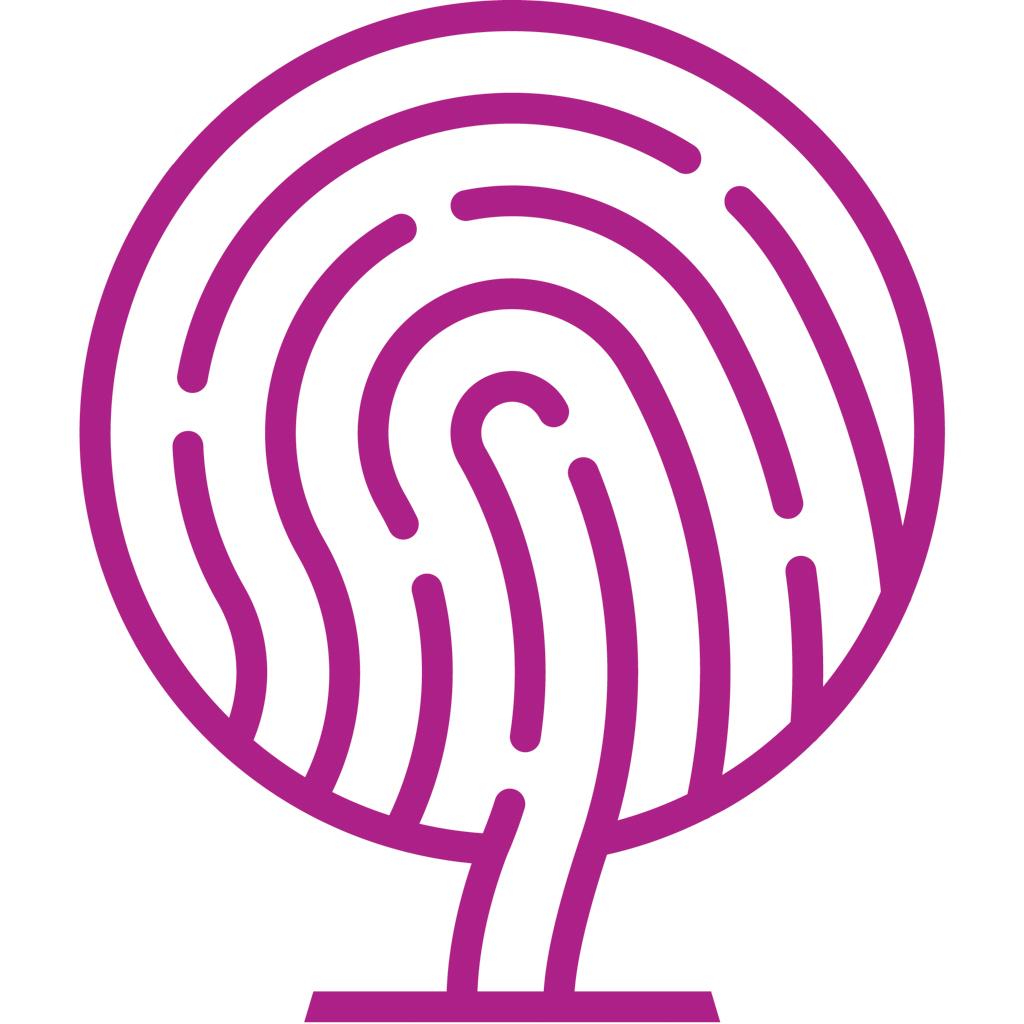 Amos Beech 'fingerprint beech tree' logo