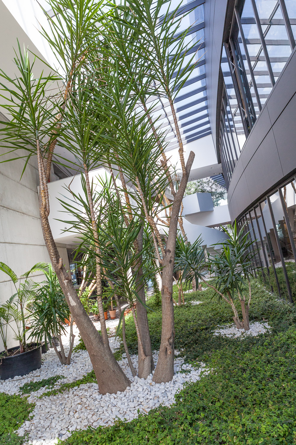 One of the indoor gardens at Actiu