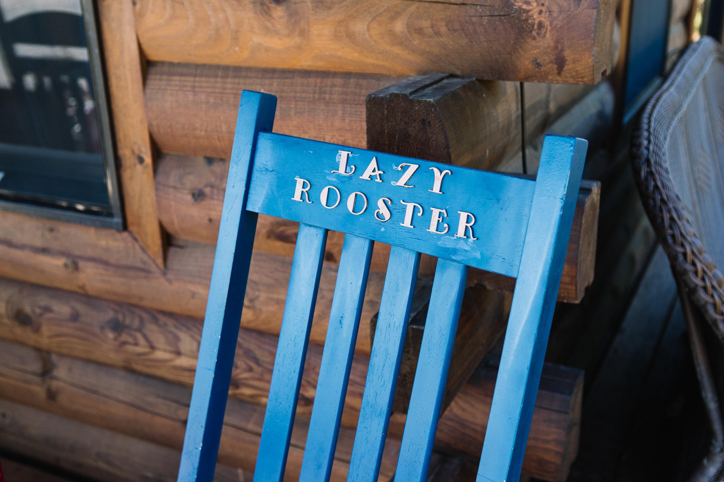 lazyrooster-7.jpg