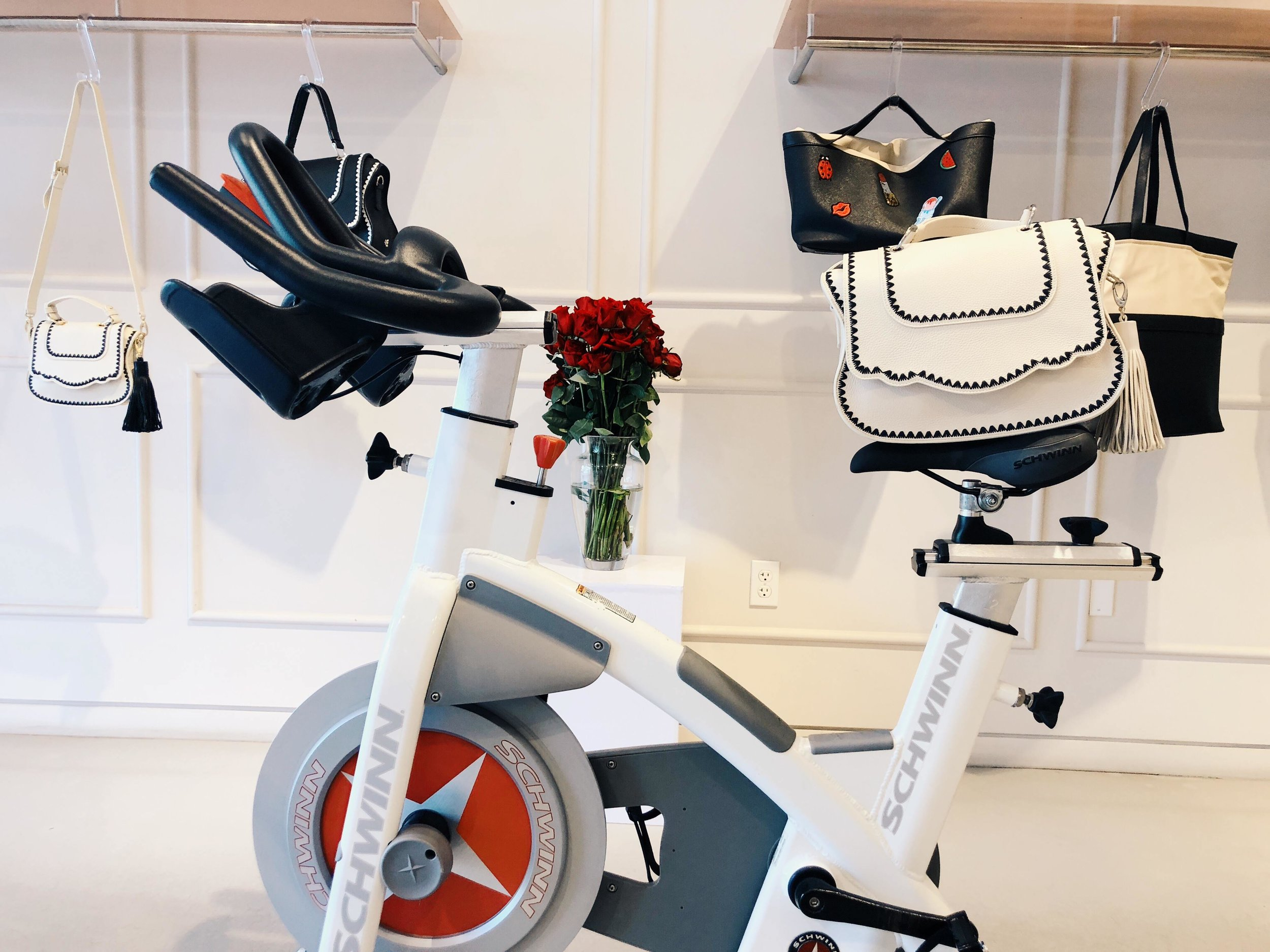 Fashion & Fitness