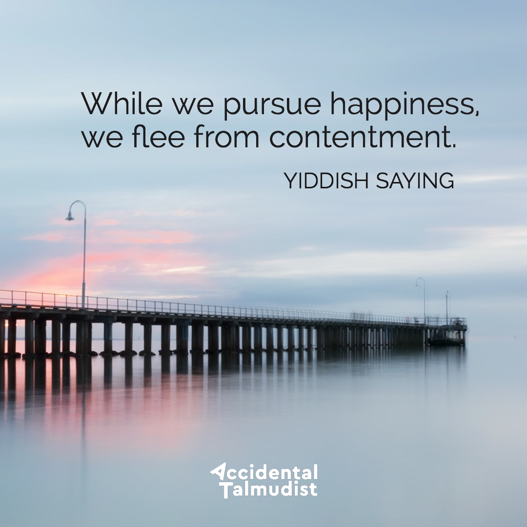 pursue happiness2.jpg