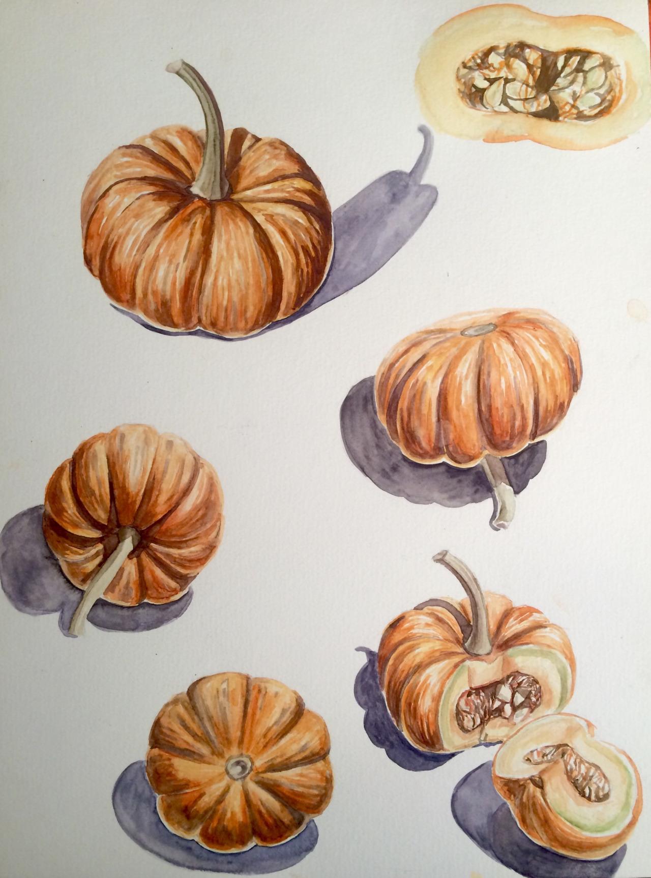 Pumpkin study   2016. Watercolor