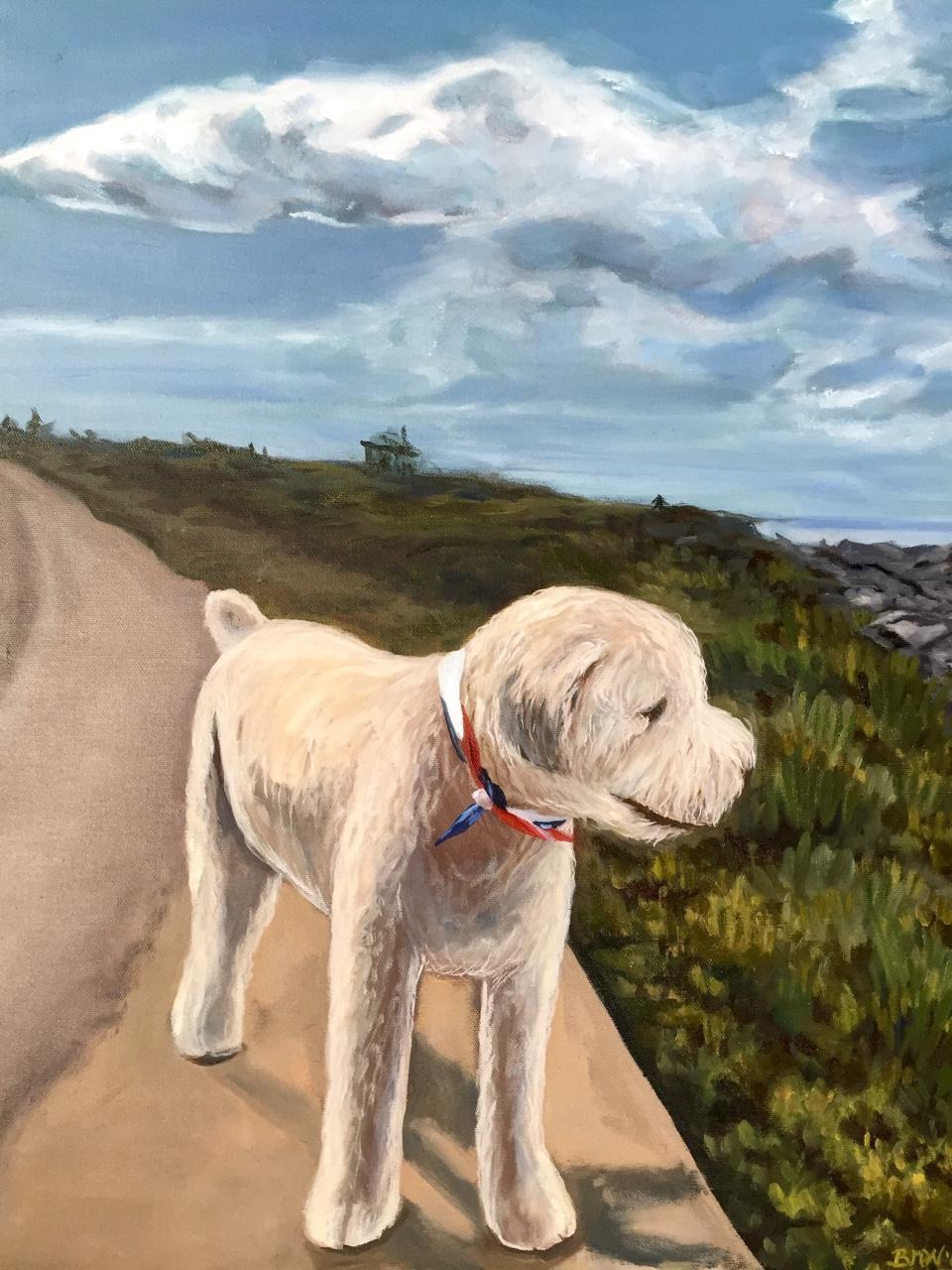 Finn   2016. Oil on canvas. 18 x 24.