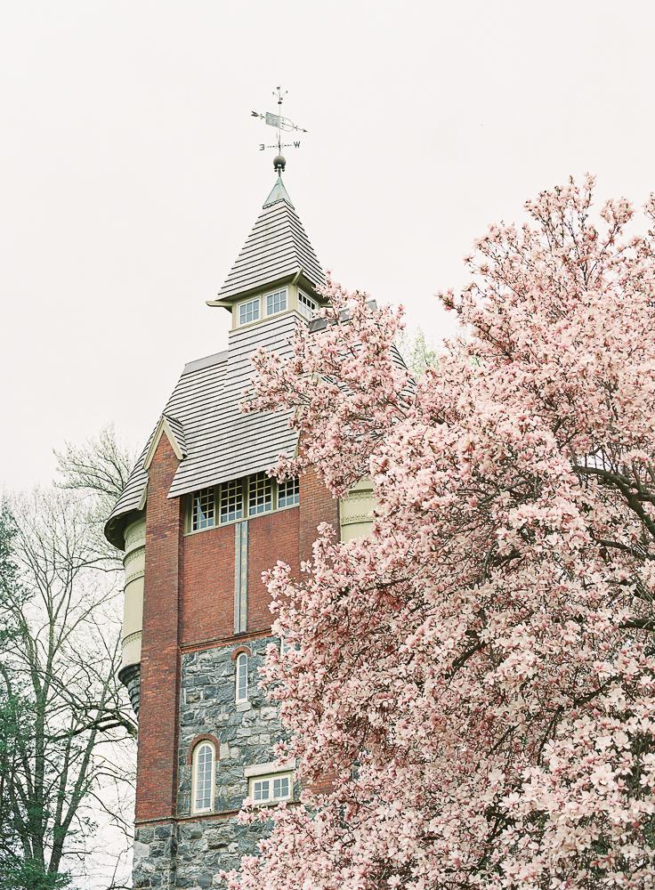Spring Engagement Shoot at Oakbourne Mansion & Park | Lisamarieartistry.com (29 of 29).jpg