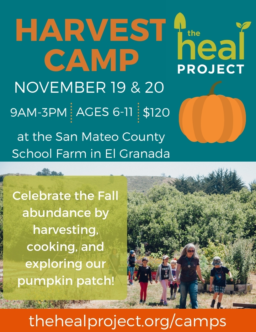 Harvest Camp Flyer 2018.jpg
