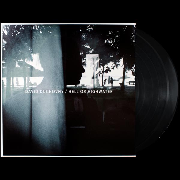 David Duchovny Vinyl Cover