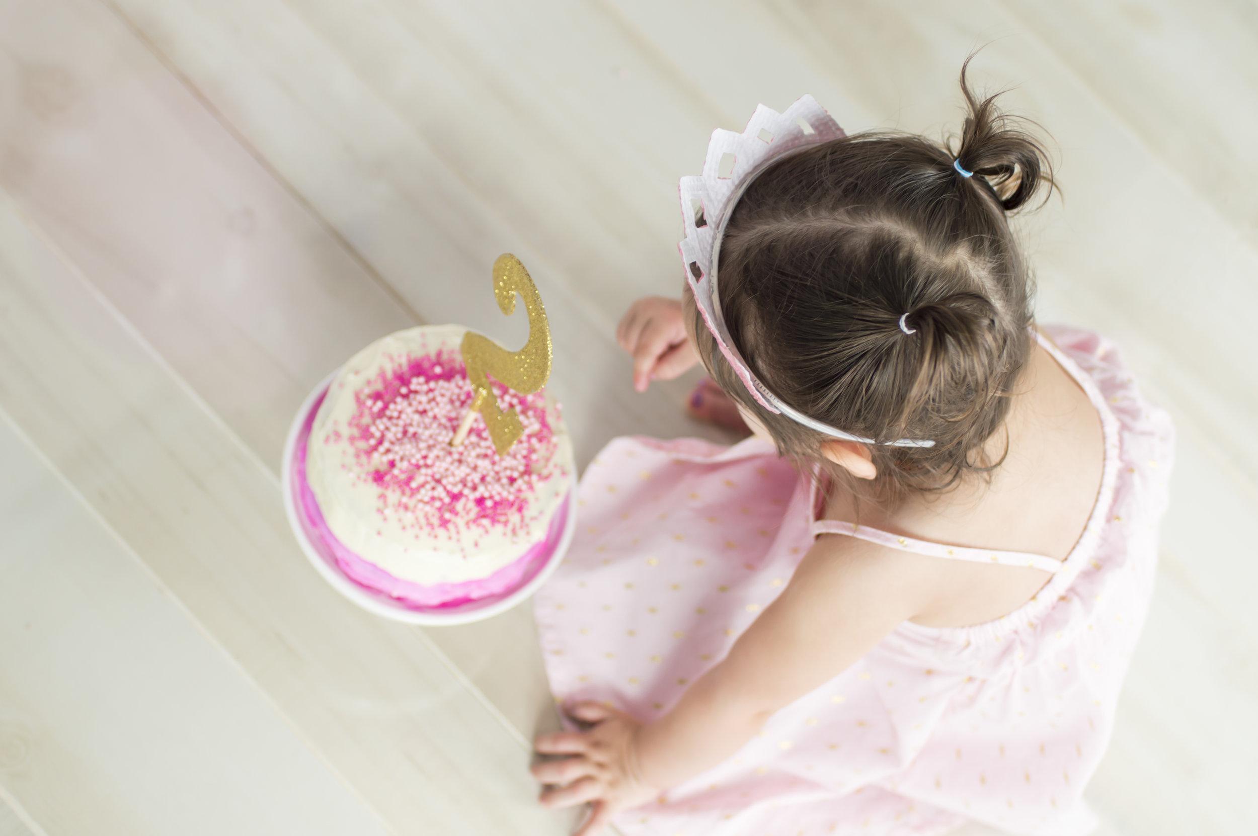 Little Girl Cake Smash Photo