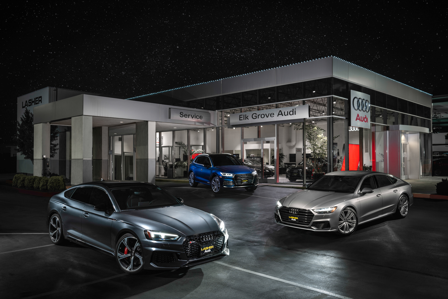 EG Audi Night Photo.jpg
