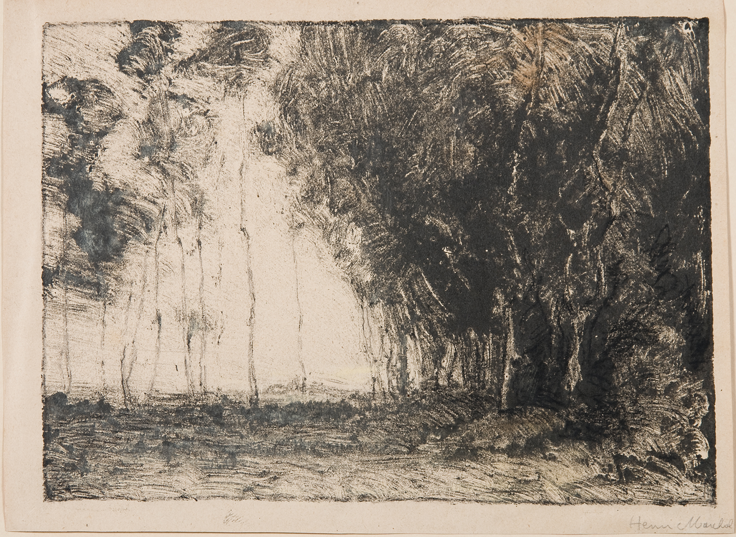 Henri Marchal, French, 1878-1949,  Popular Trees,   c.  1917, monotype, 6 x 8""