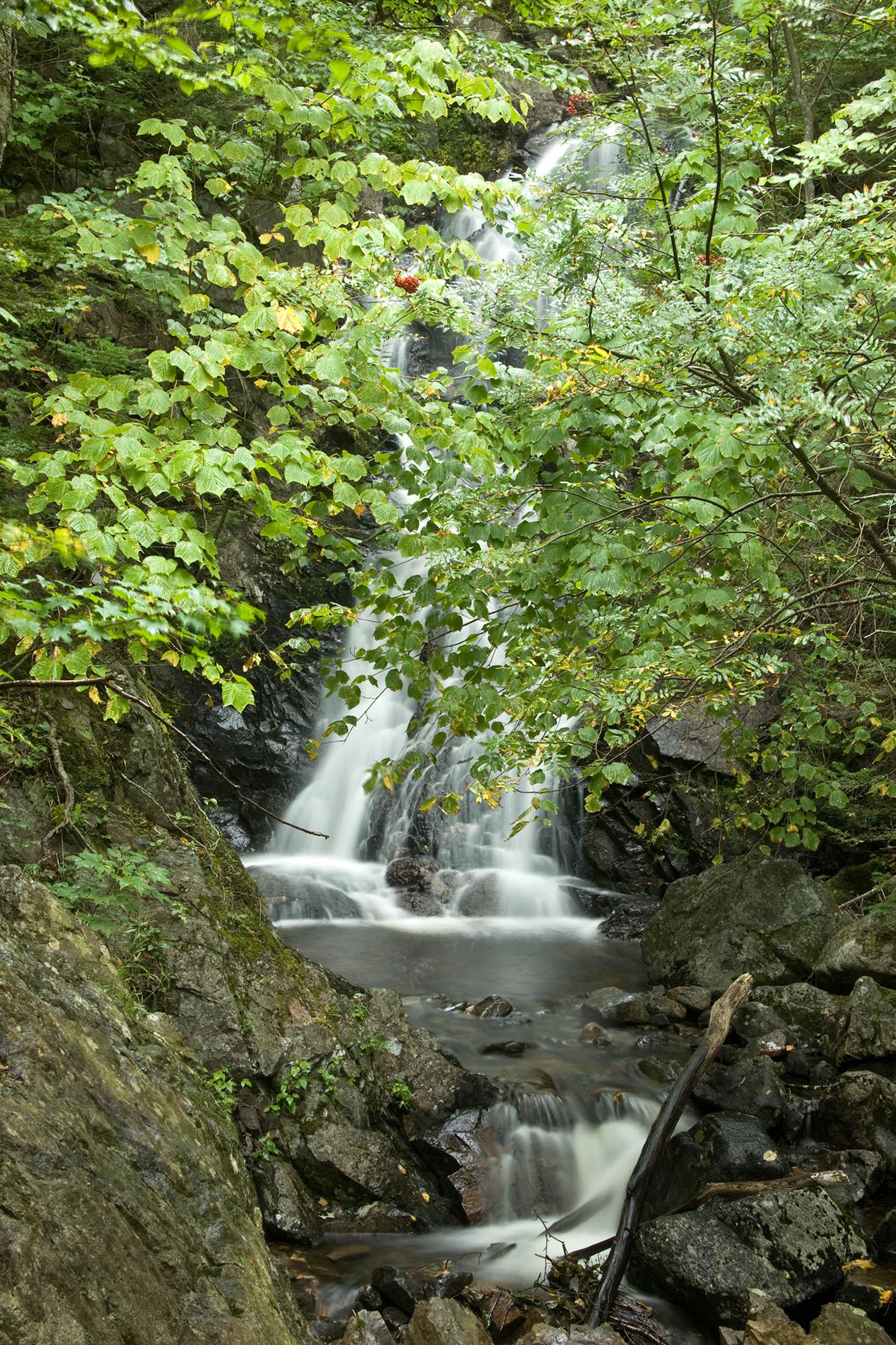 Corney Brook Trail12_PRWF.jpg