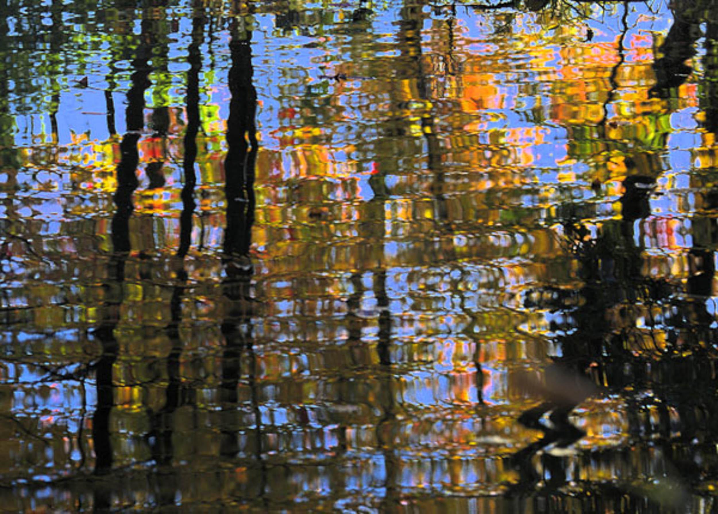 AutumnReflection1.jpg