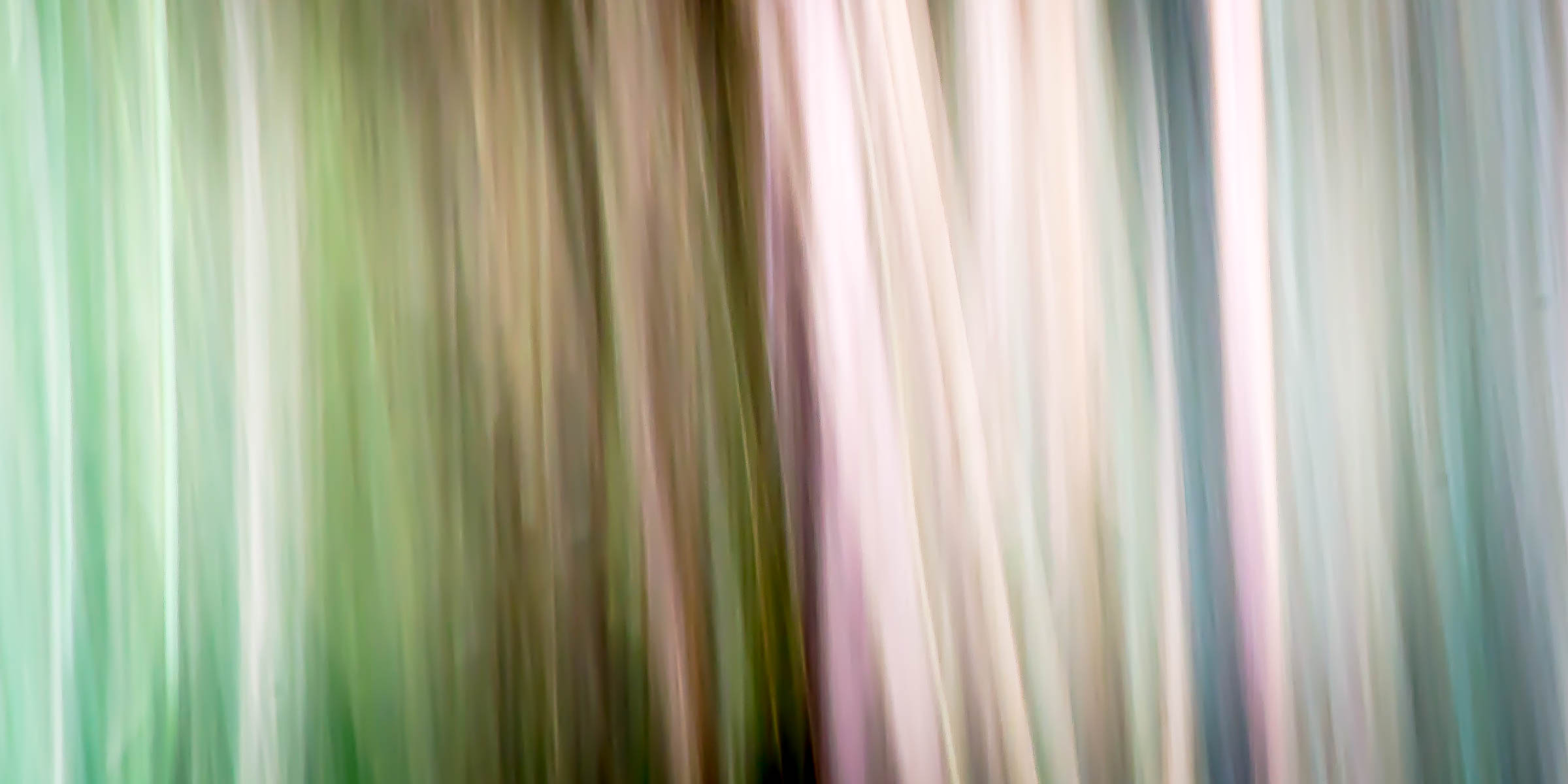 _MGL8533-2_Woodland Pastels.jpg