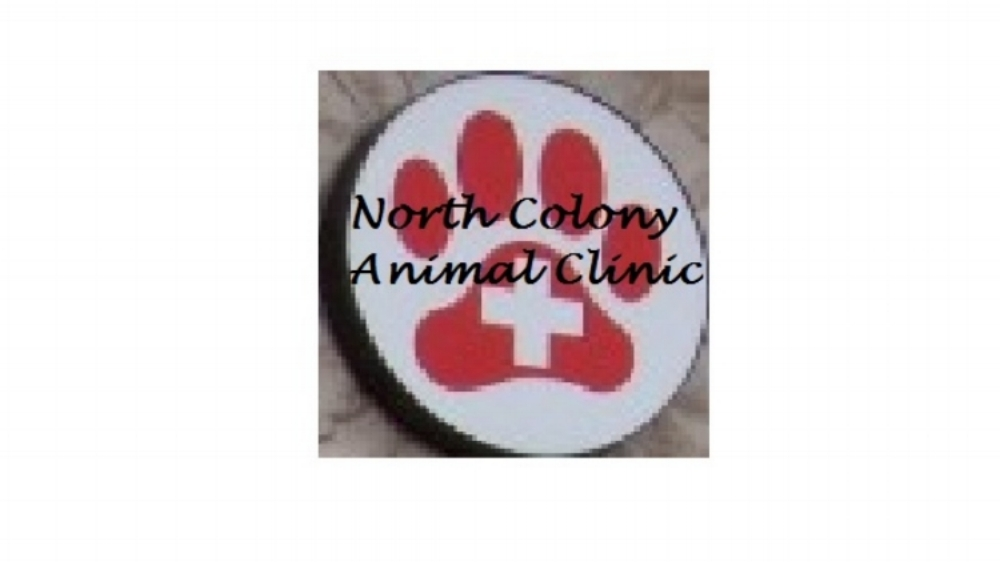 North Colony Animal Clinic