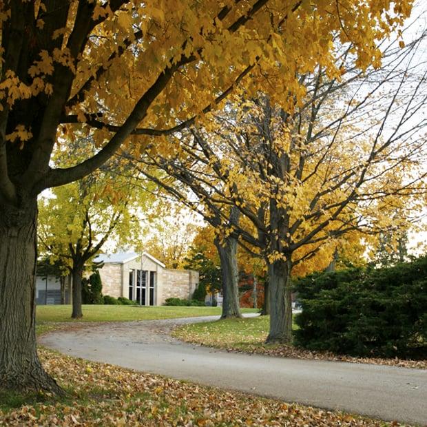 sanctuary fall foliage.jpg