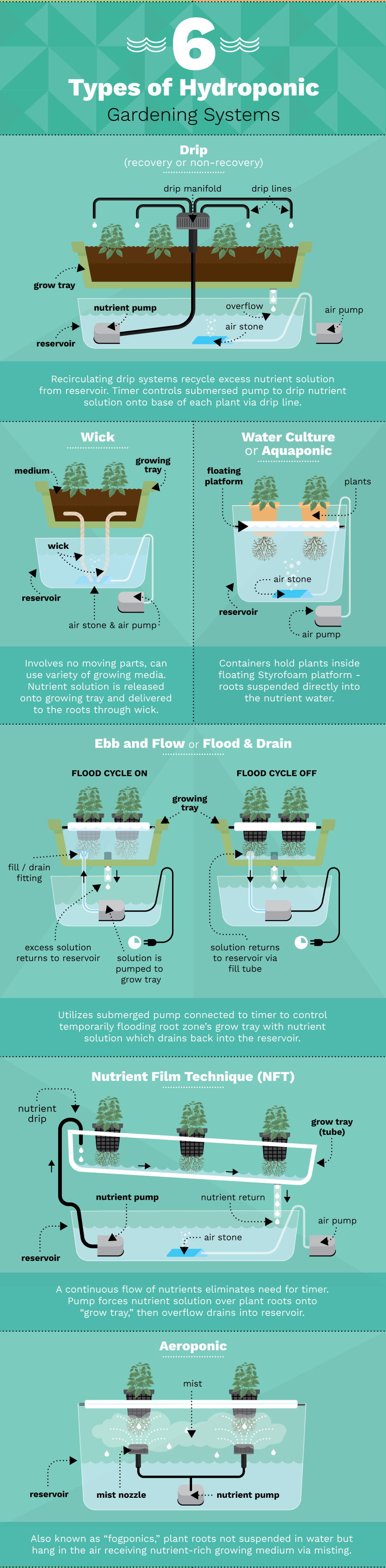 six-types-hydroponic-gardening-systems.png