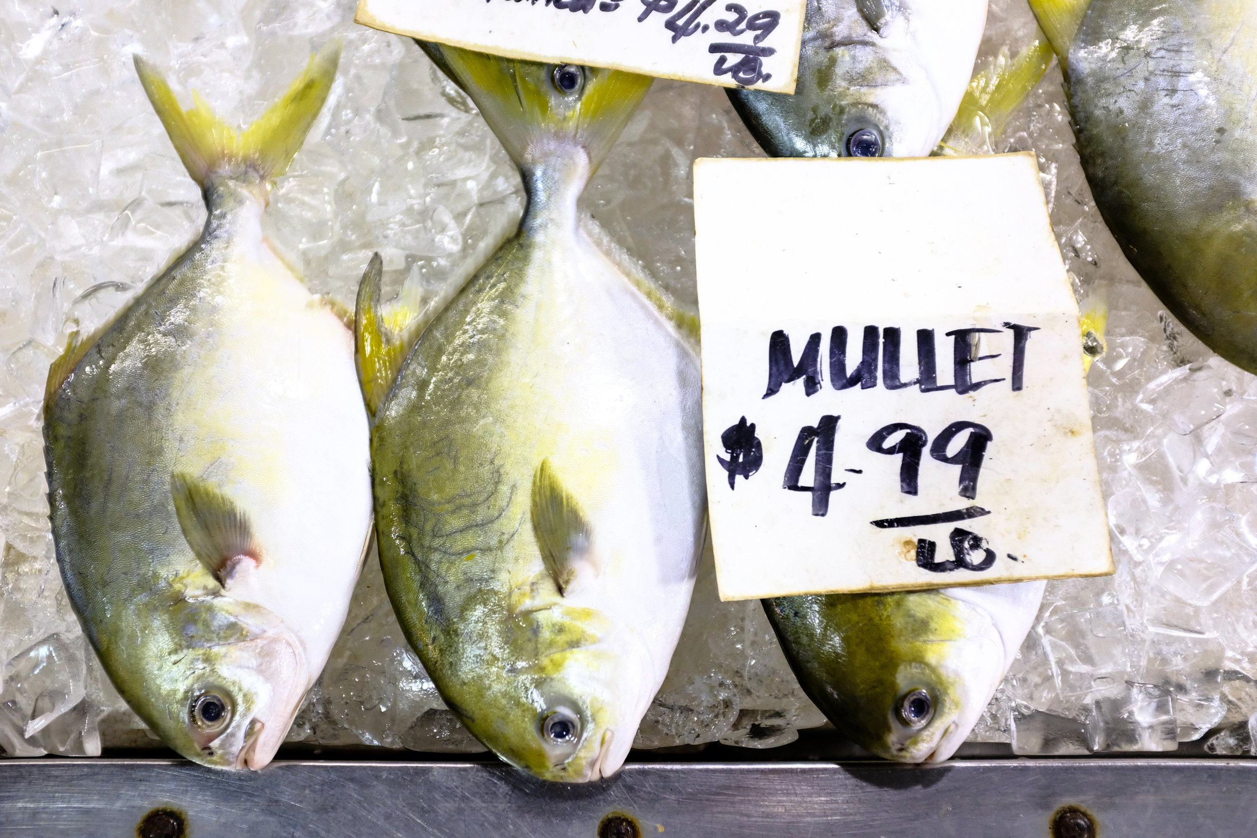 Mullet at the Chinatown Market