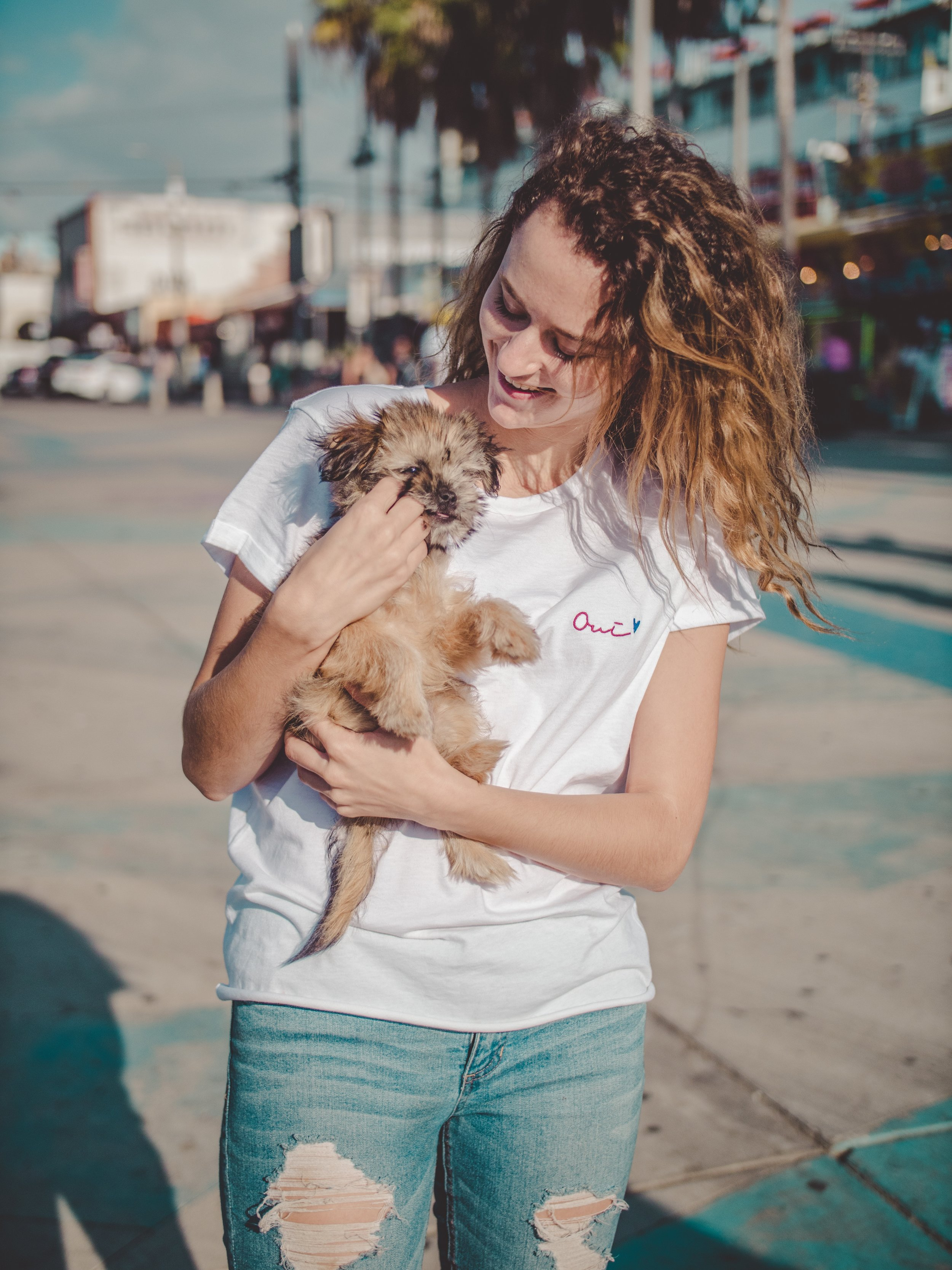 Adopt a puppy in Santa Monica