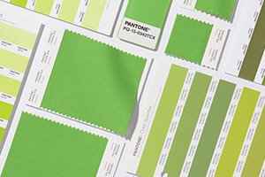 Pantone's colour of the year 2017 - Greenery