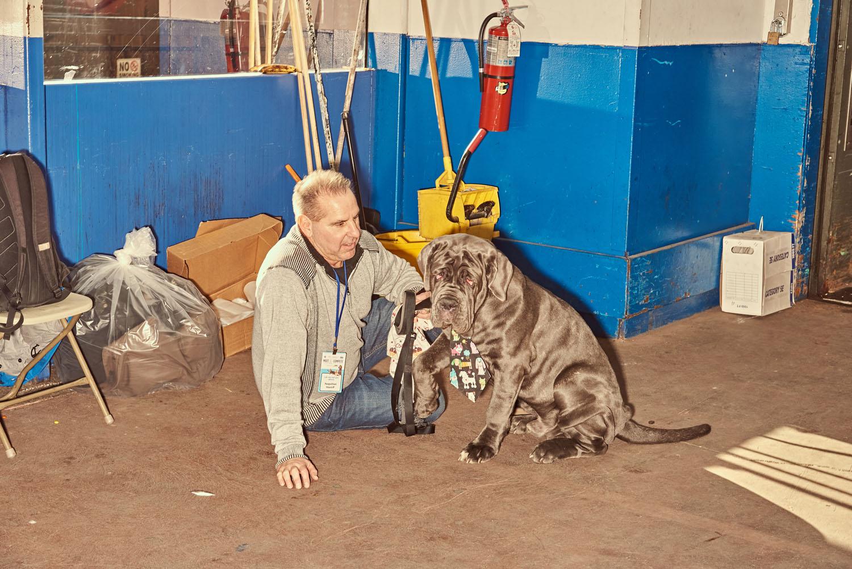 dogshow19 10.jpg