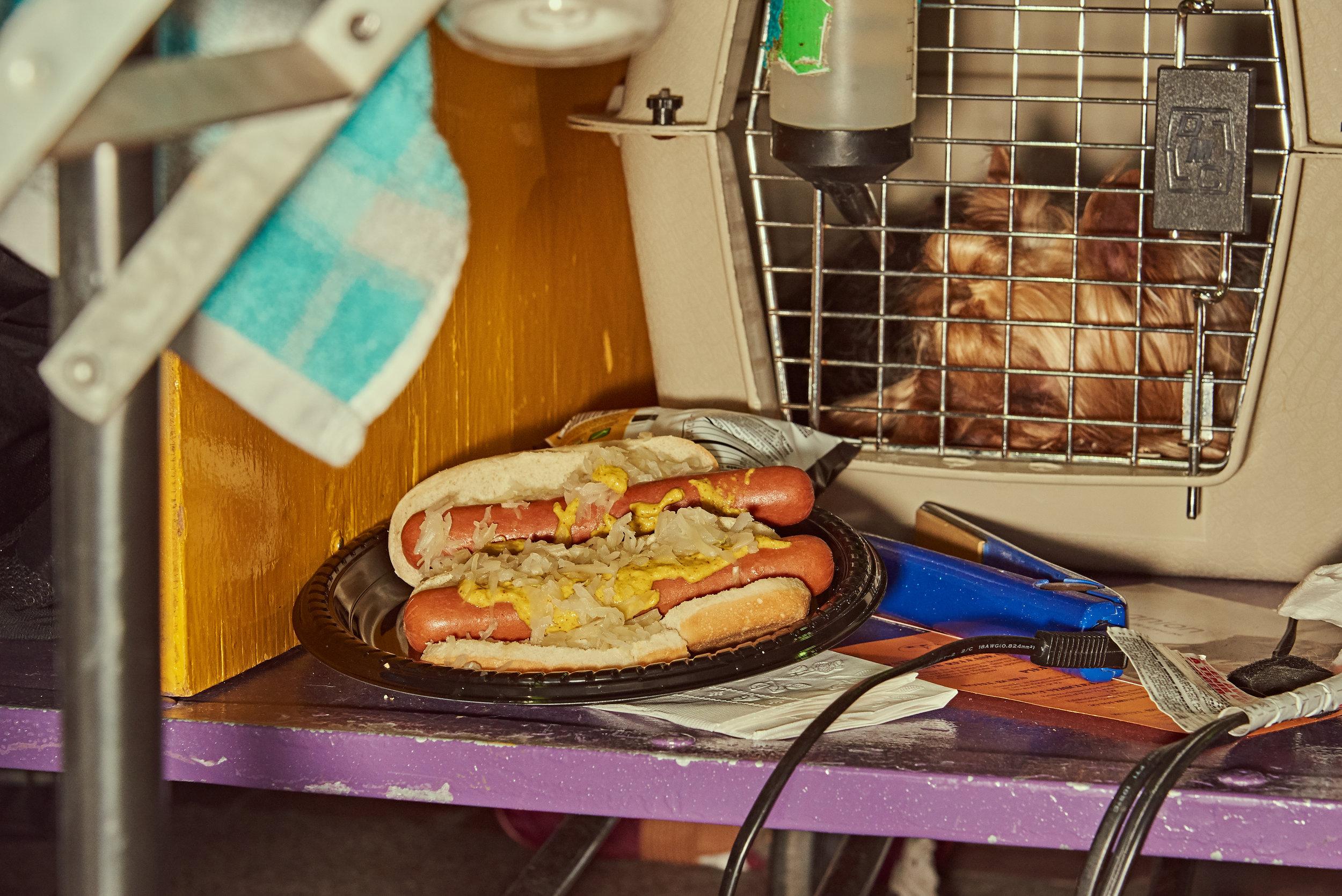 dogshow19_Day2 12.jpg