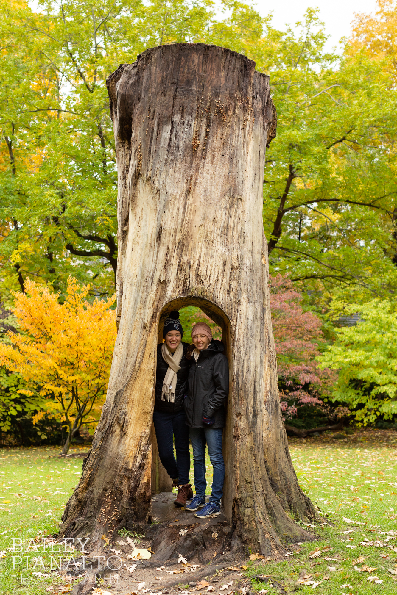 Fall in Rochester, NY