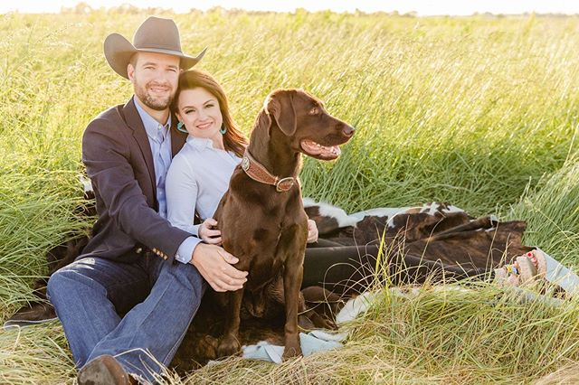 """Just in time for National Dog Day Alden, Brad, and Kam are on THE KNOT today! Check out their full proposal story on The Knot's """"How They Asked"""" via the link in my bio (new on the blog)!"""