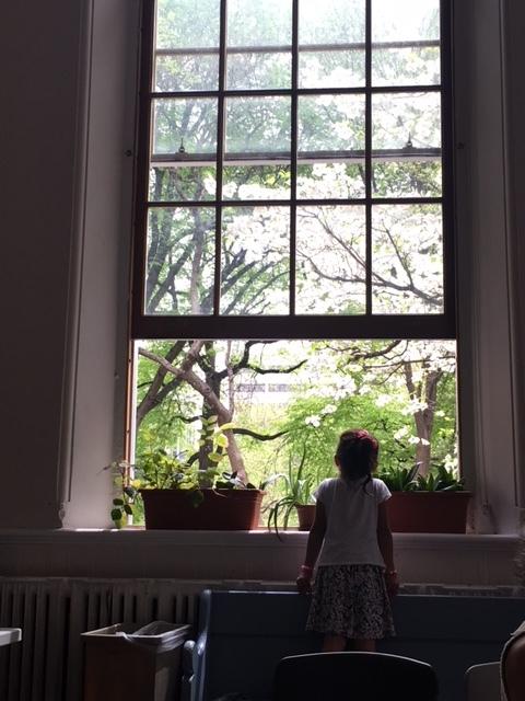 summer and window at citylights.JPG