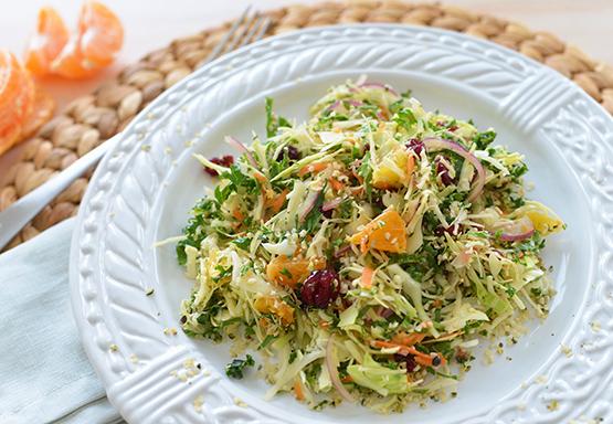 Winter Cabbage & Kale Salad - Stephanie Arsenault - Global Dish