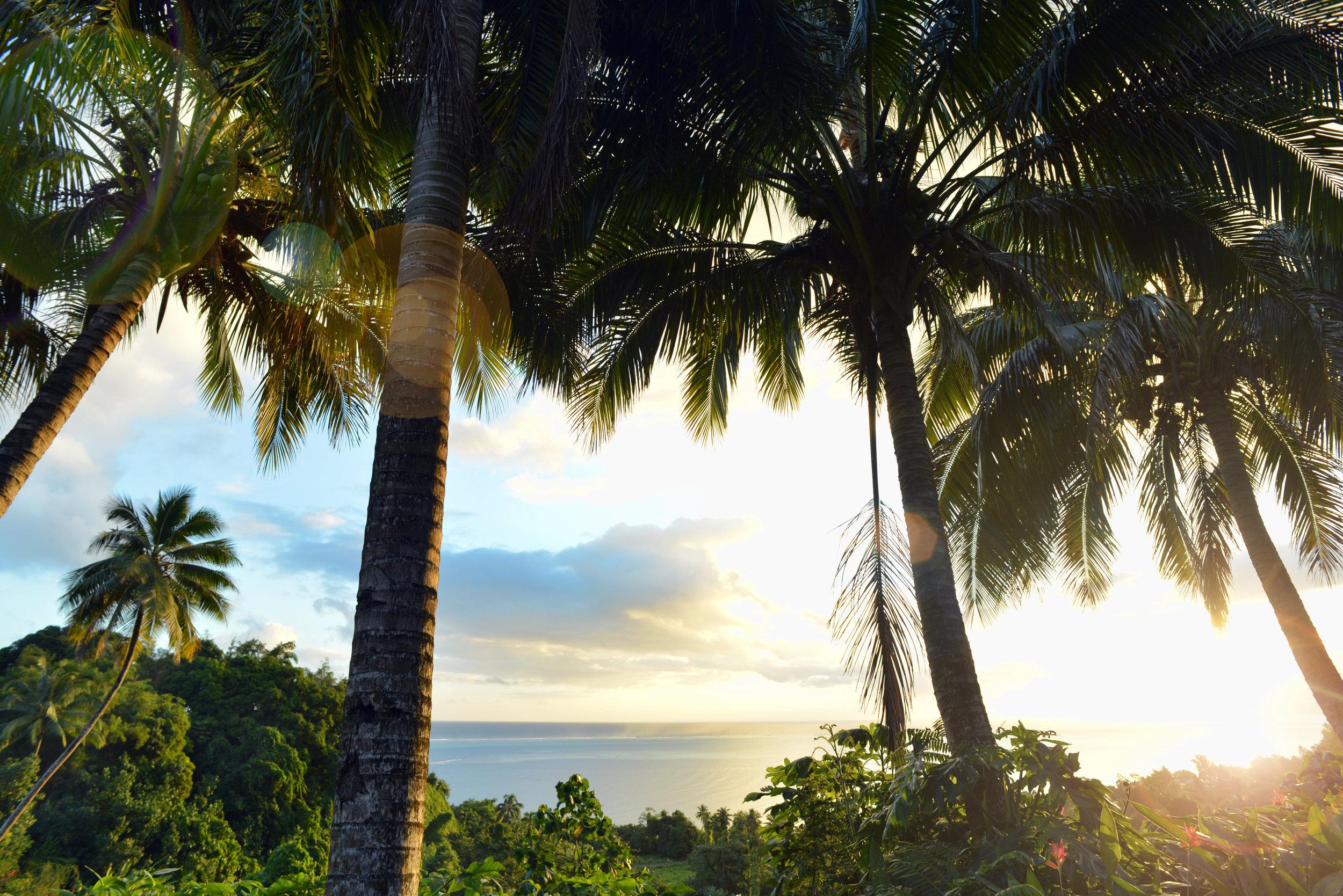 Sunset viewed from Vanira Lodge, Teahupo'o, Tahiti.